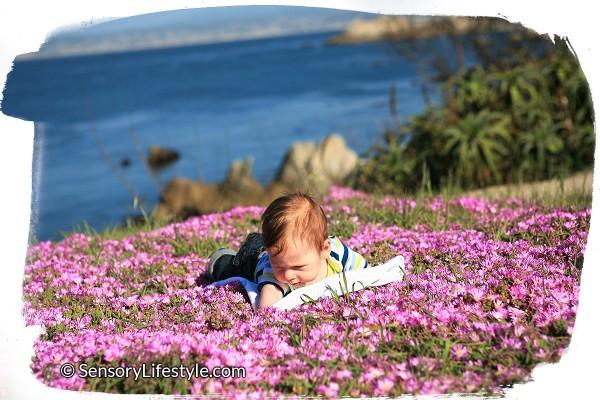 3 month baby activities: Josh outdoors