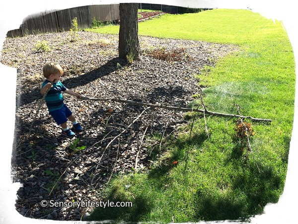 Josh pulling a branch